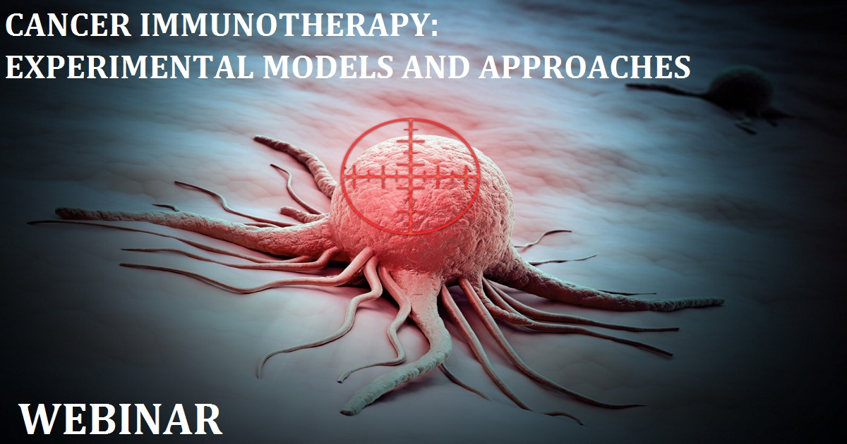 CANCER IMMUNOTHERAPY: EXPERIMENTAL MODELS AND APPROACHES