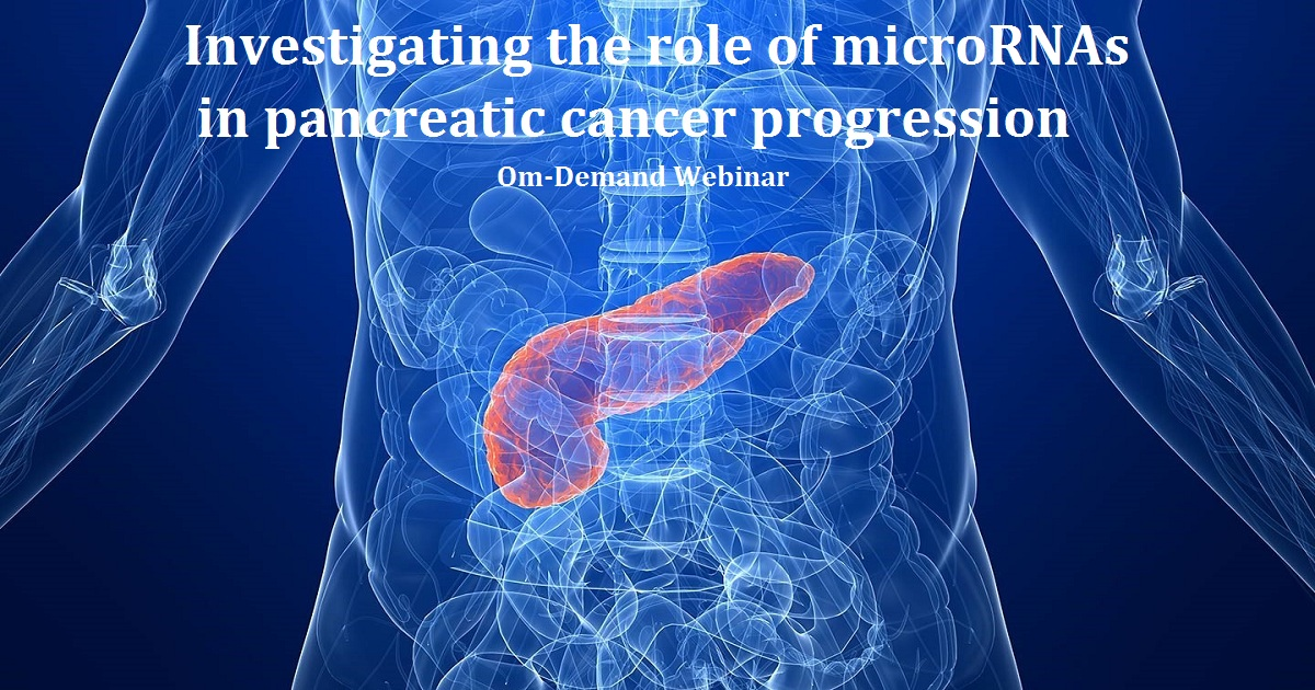 Investigating the role of microRNAs in pancreatic cancer progression