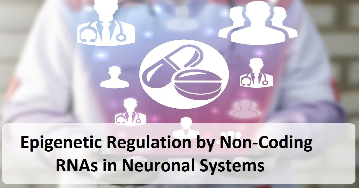 Control-Alter-Delete: Epigenetic Regulation by Non-Coding RNAs in Neuronal Systems Webinar