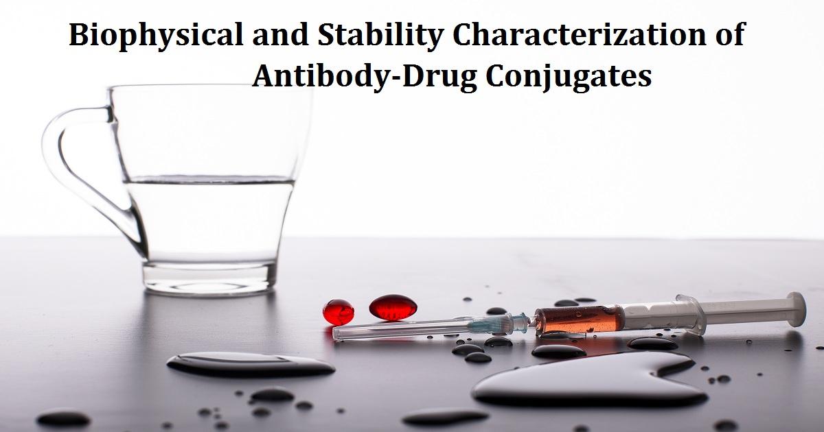 Biophysical and Stability Characterization of Antibody-Drug Conjugates