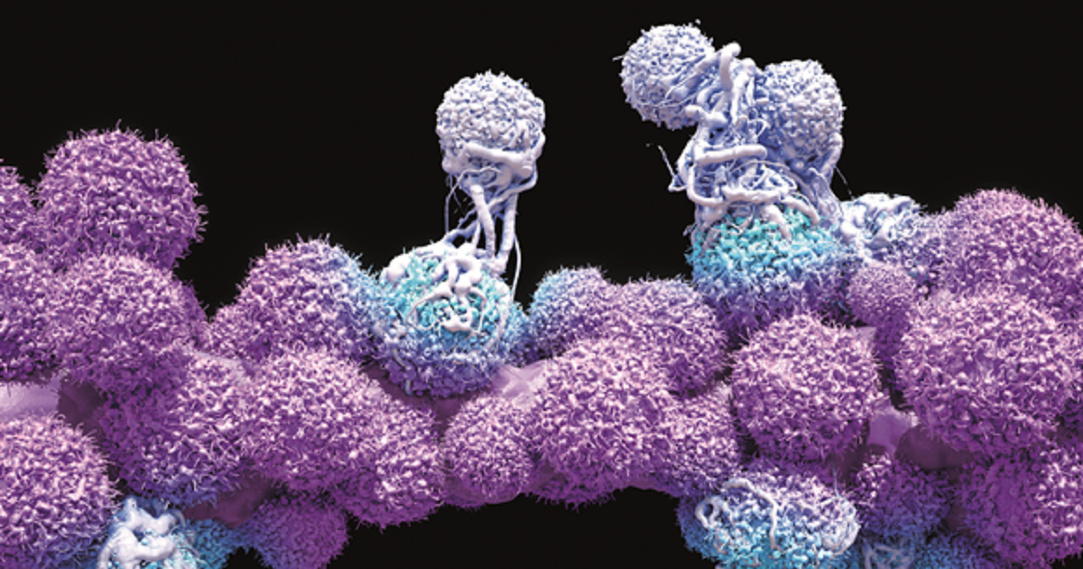 Cancer Research and Pharmacology