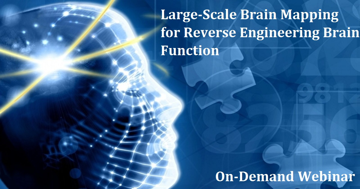 Large-Scale Brain Mapping for Reverse Engineering Brain Function