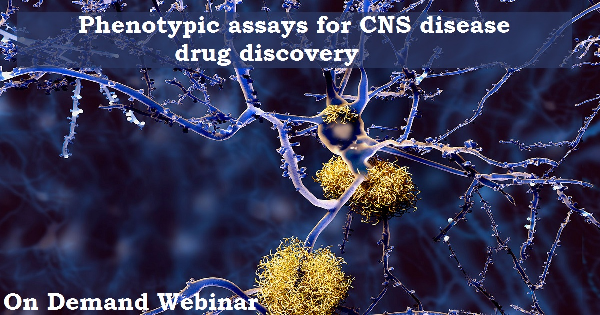 Phenotypic assays for CNS disease drug discovery