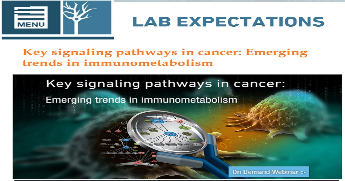 Key signaling pathways in cancer: Emerging trends in immunometabolism