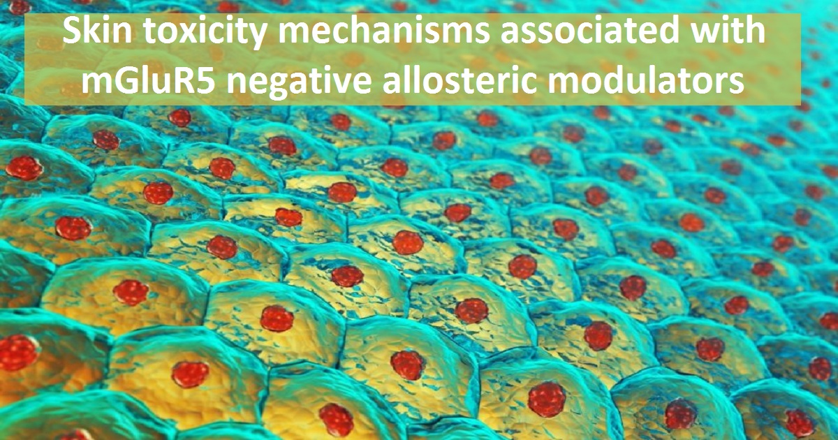 Skin toxicity mechanisms associated with mGluR5 negative allosteric modulators