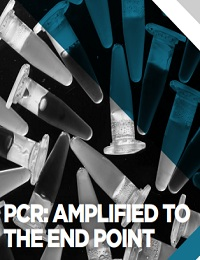 PCR: AMPLIFIED TO THE END POINT